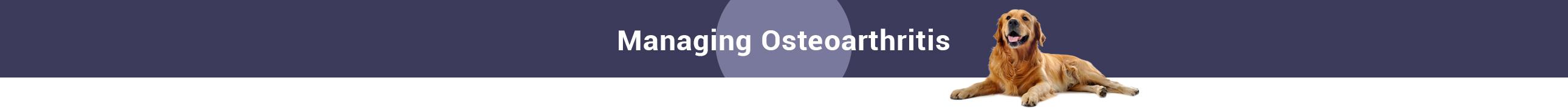 ManagingOsteoarthritis-Slider
